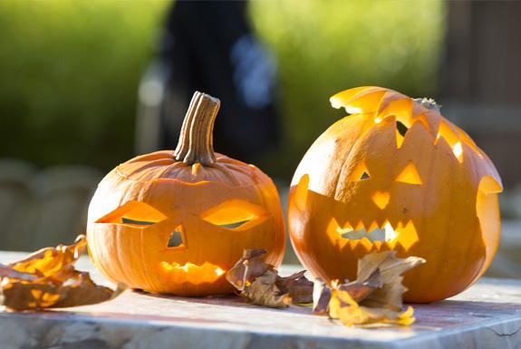 Halloween | Ferienresort Bad Bentheim